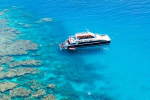 Great Barrier Reef Cruise - Dreamtime Dive and Snorkel - Milln Reef